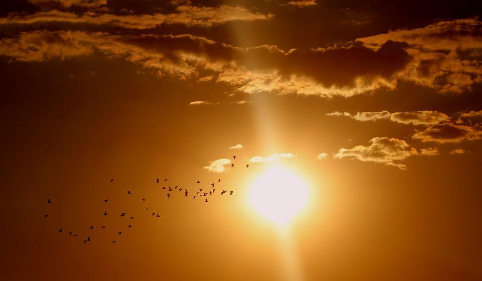 sunset-1625073_960_720